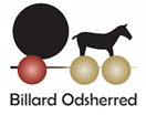 Billard Odsherred